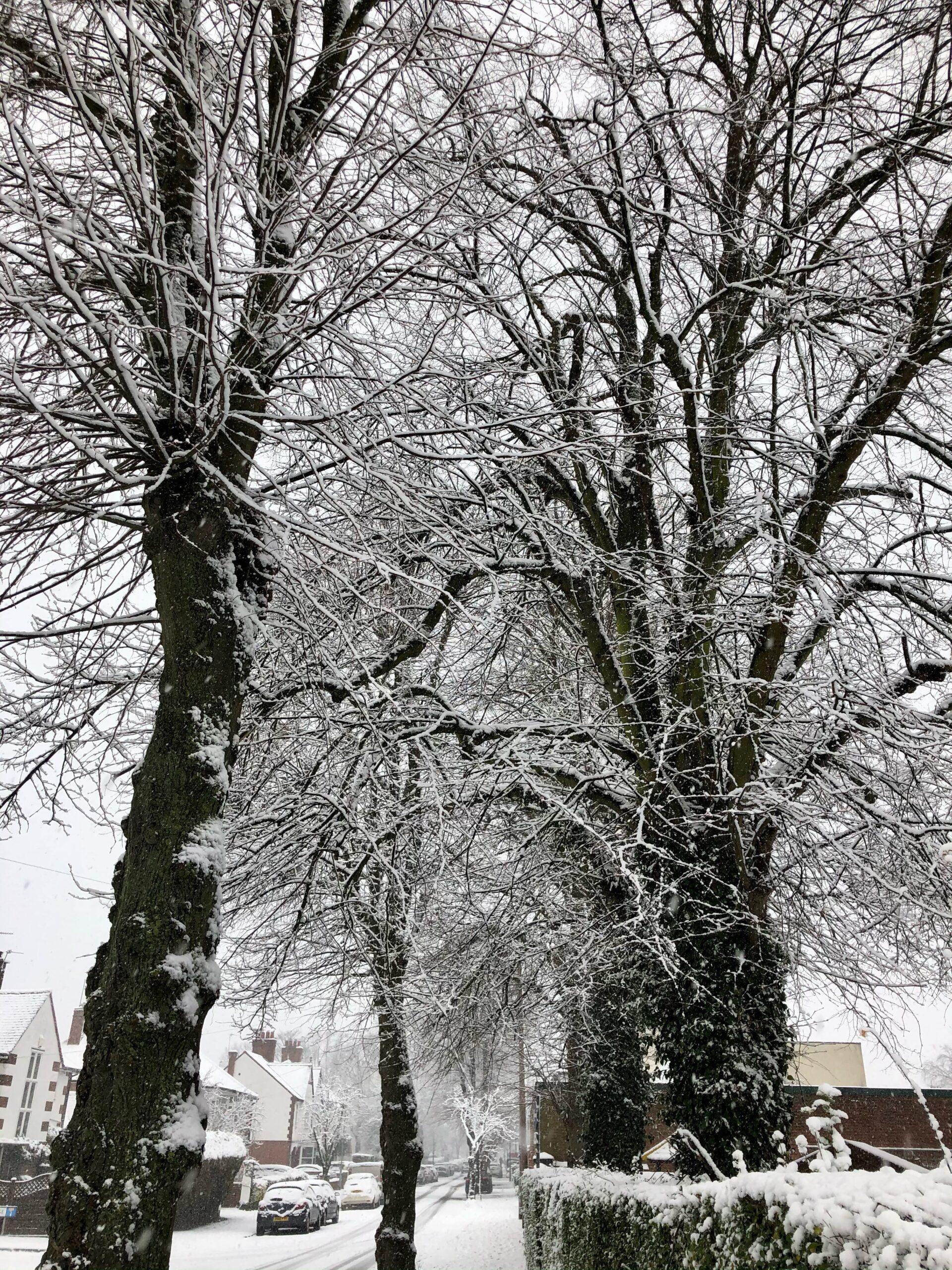Nicola-Dawson-Snow-in-Syston-1-broad-St-scaled